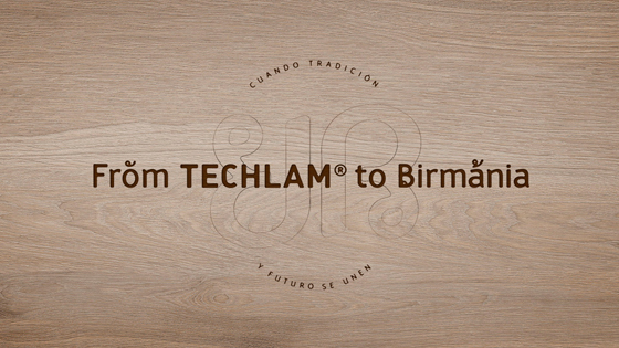 From TECHLAM to Birmania